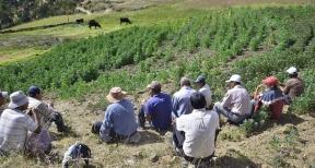 Agricultores en el Valle de Condebamba